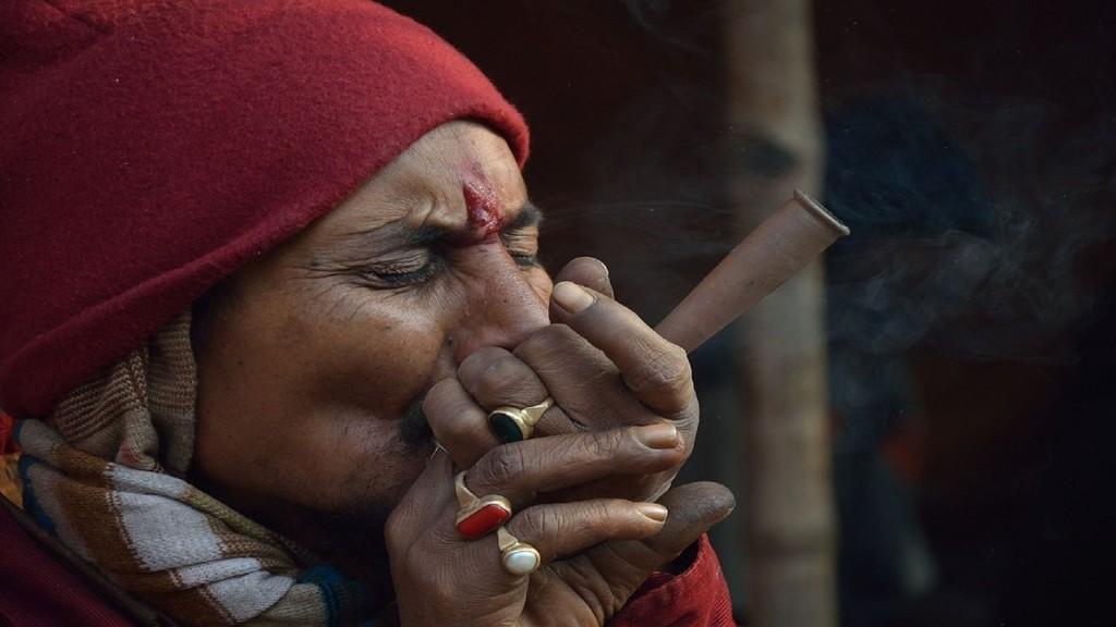 毎日、大麻草を吸うとどうなるの?科学的なエビデンスを元に学習していきましょう